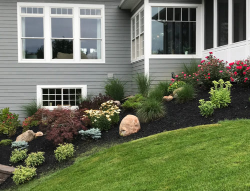 What's Your Landscape Style?